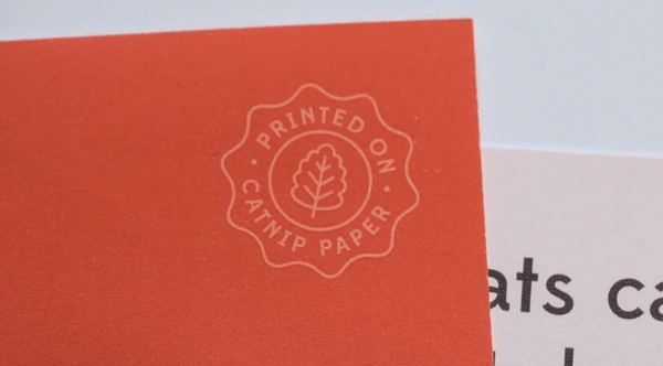 Printed On Catnip Paper flyer logo