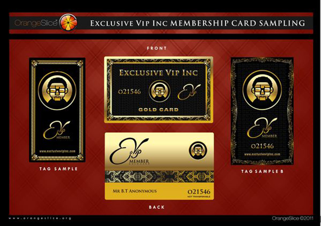 Inspired design from American Express are these glamorous, metallic membership cards for eVIP Branding by OrangeSlice