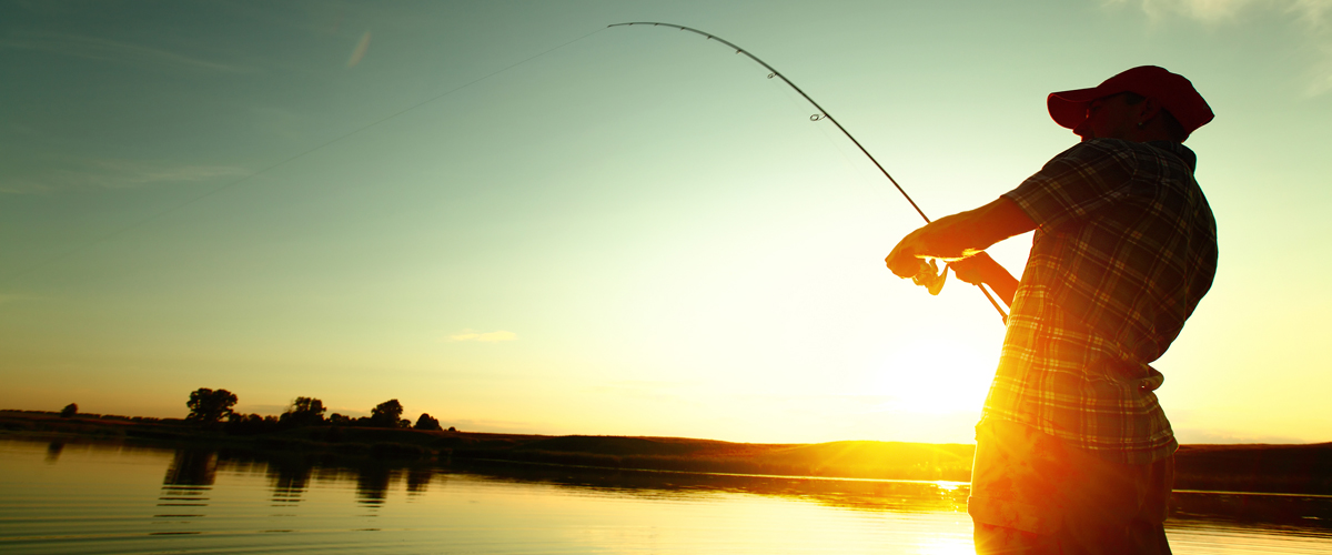 Customer Stories - Teach A Brand To Fish