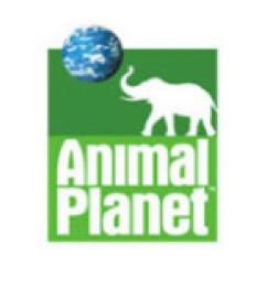 AnimalPlanet-1